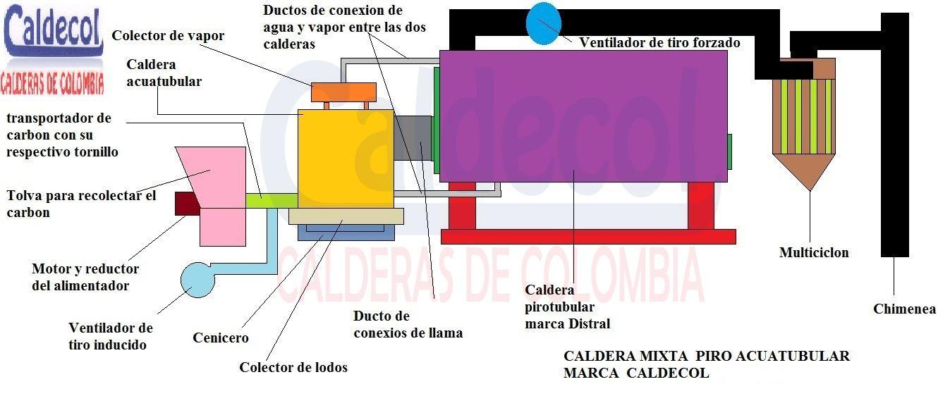 Famoso Diagrama De La Anatomía Hueso De La Cadera Fotos - Anatomía ...
